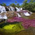 Cảnh thần tiên nơi dòng sông ngũ sắc ở công viên quốc gia Macarena