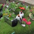 Vườn hoa xinh lung linh nhờ tận dụng đồ cũ 15